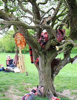 Fairy Tree on Hill of Tara